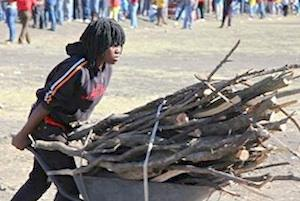 Picture: A woman collecting firewood in Marikana courtesy Gillian Schutte