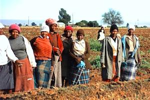 Picture: Farmworkers courtesy John via Wikimedia Commons
